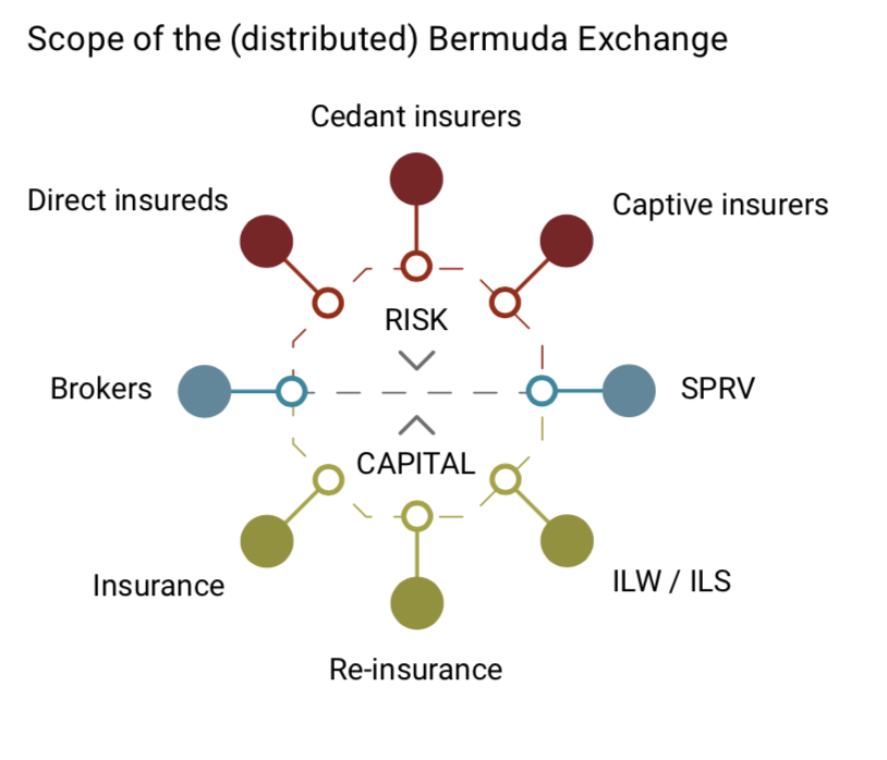 Scope of the Bermuda Exchange - Source: ChainThat